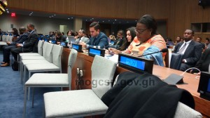 The 54th UN Commission On Social Development